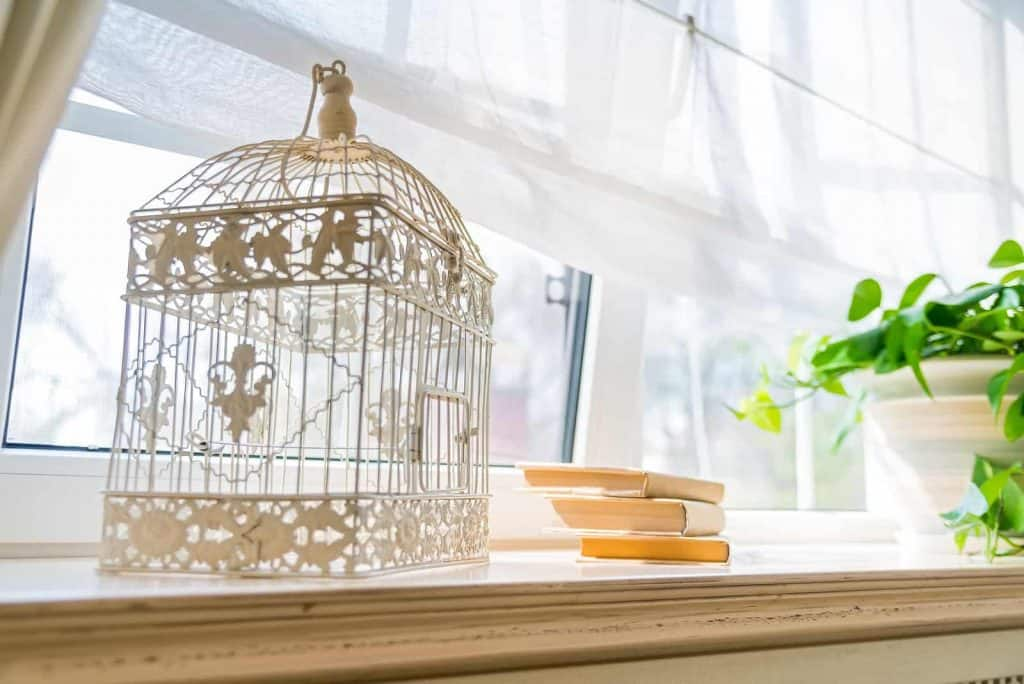 Empty birdcage used as an inexpensive summer decor piece