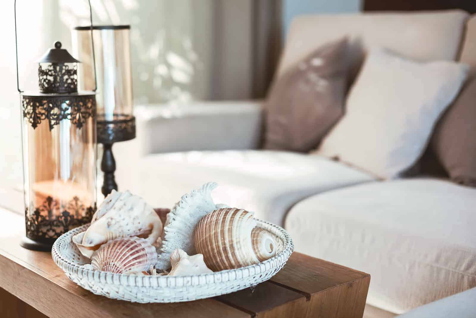 Seashells on coffee table as part of interior home decor for summer