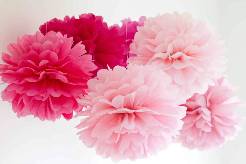 Pink tissue pompoms used as decoration for a party or decor for girl's room