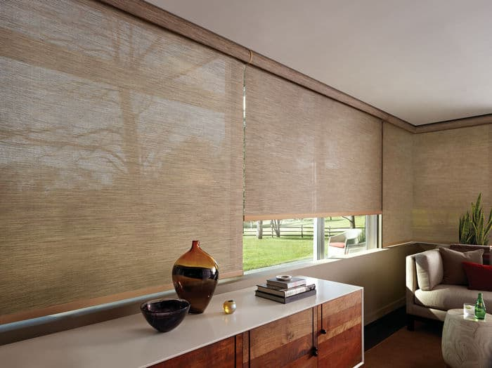 Stylish window shades cover house windows